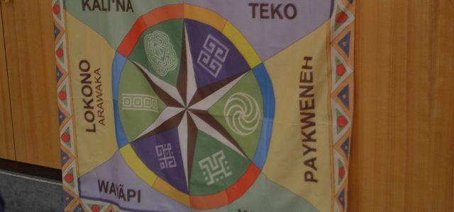 Rencontre au Sénat Suicides des jeunes amérindiens en Guyane française – Comment enrayer ces drames et créer les conditions d'un mieux être ? Parlementaires, habitants du Haut-Maroni, de l'Oyapock, associations, […]